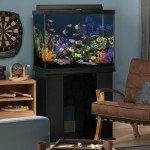 Marineland 56 Gallon Column Aquarium Ensemble - Review & Specs