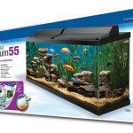 Aqueon 17770 Deluxe Aquarium 55 Gallon Kit - Review & Specs
