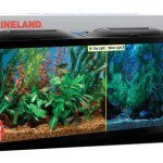 MarineLand BioWheel 55 Gallon Fish Tank - Review & Specs