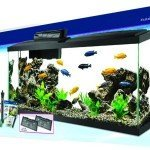 Aqueon LED 55 Gallon Aquarium Kit Review & Specs