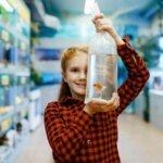 Best 5-Gallon Aquariums & Buyers Guide