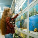 Best 15-Gallon Fish Tanks & Buyers Guide