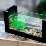 Best Aquarium safe Silicone 2021 & Buyers Guide